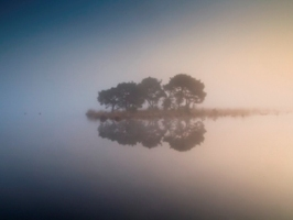 Bas van Laarhoven Fotografie