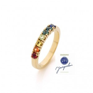 jacqueline-vugs-regenboog-ring-met-logo-compr